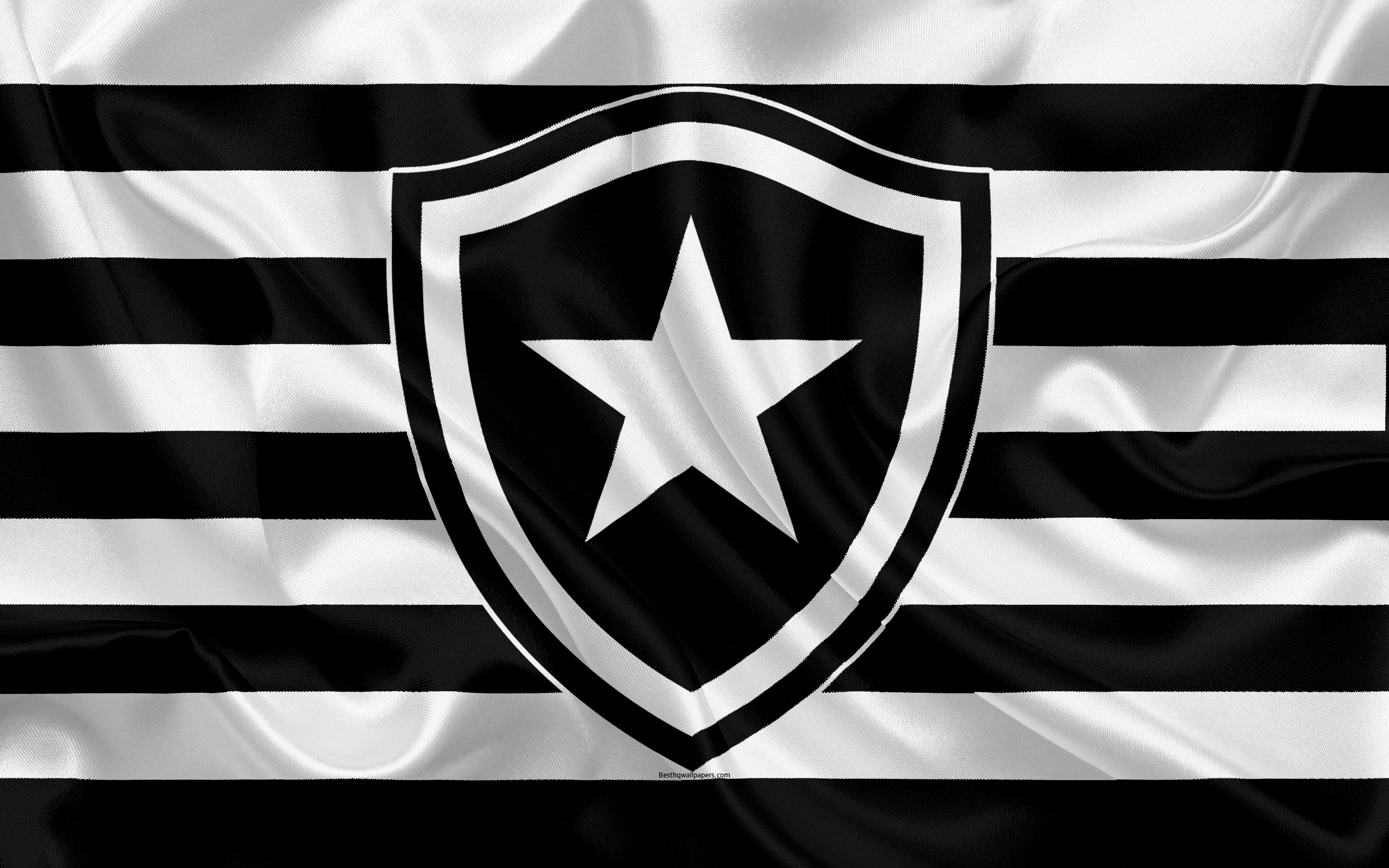 Download wallpapers Botafogo RJ FC Brazilian football club 2560x1600