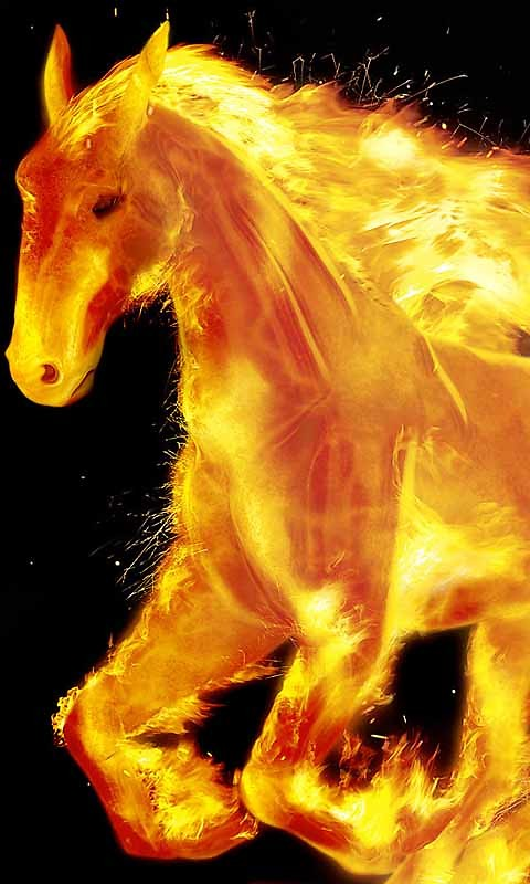 Fire Horse Live Wallpaper Android Live Wallpaper download 480x800