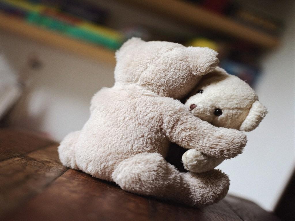 Hug Bears Hd Wallpaper Love Wallpaper WallpaperMinecom 1024x768