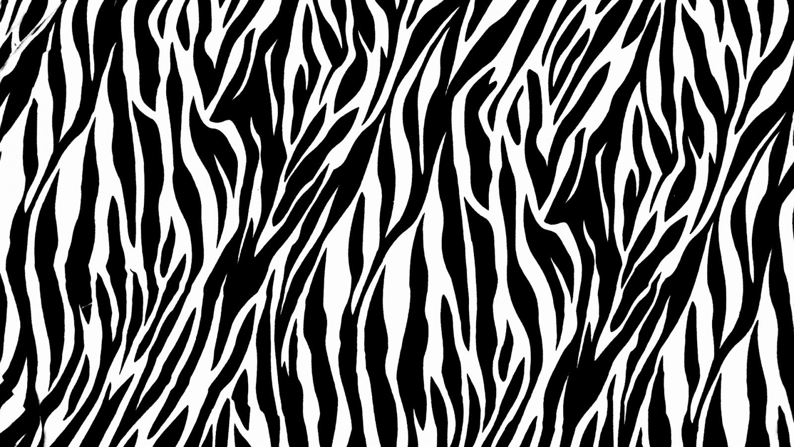 Zebra Print   1600x900   461000 1600x900