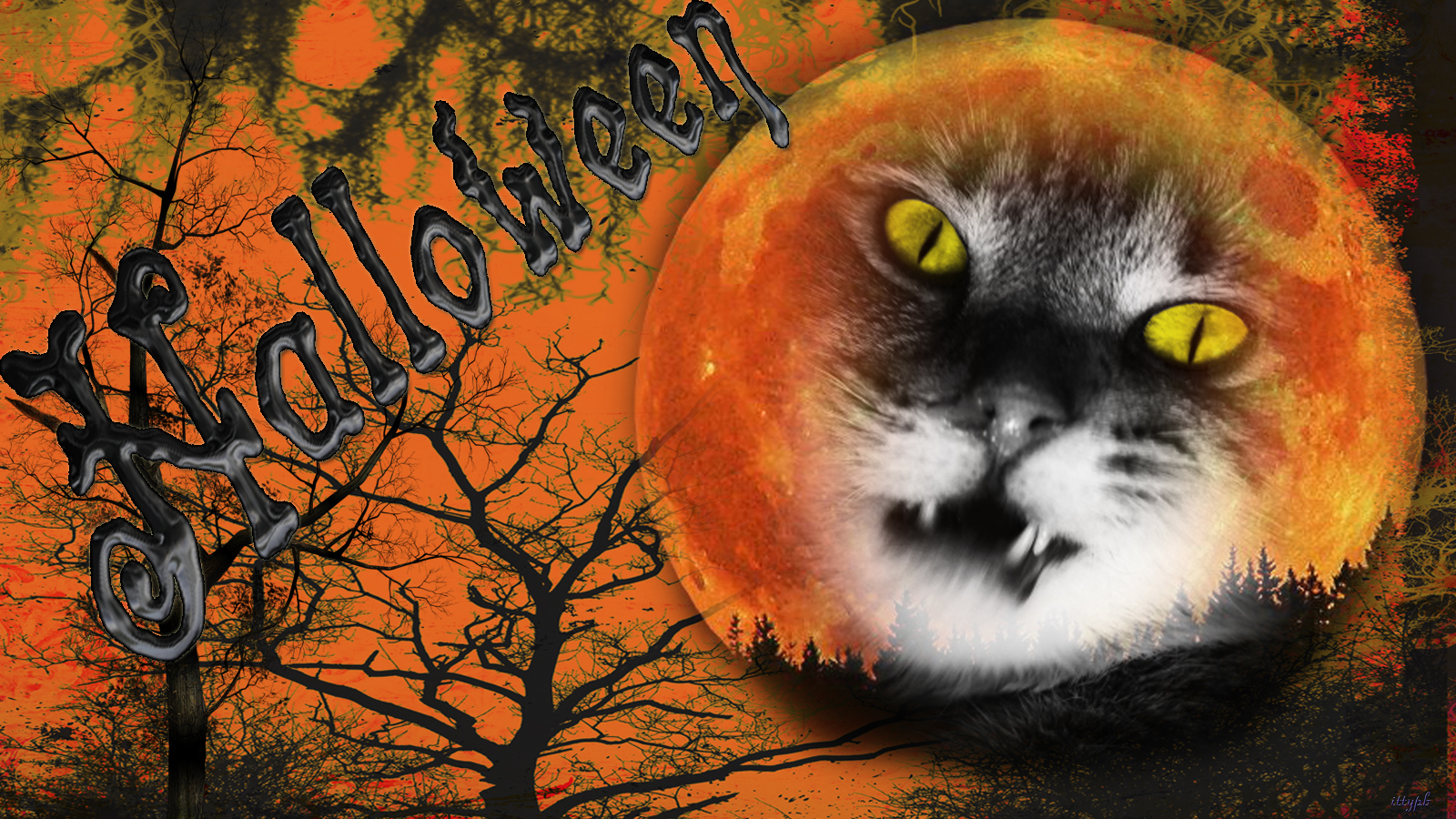 free halloween desktop wallpaper 1600x900