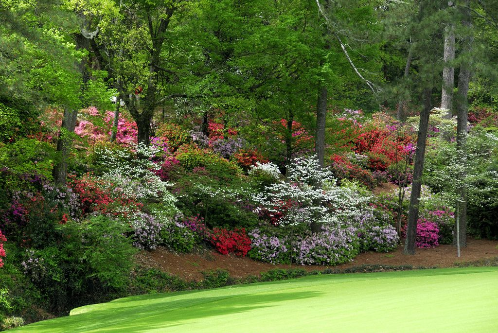 2015 Wallpapers Of Augusta National 1024x685