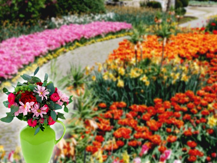 flowers garden wallpapers 720x540