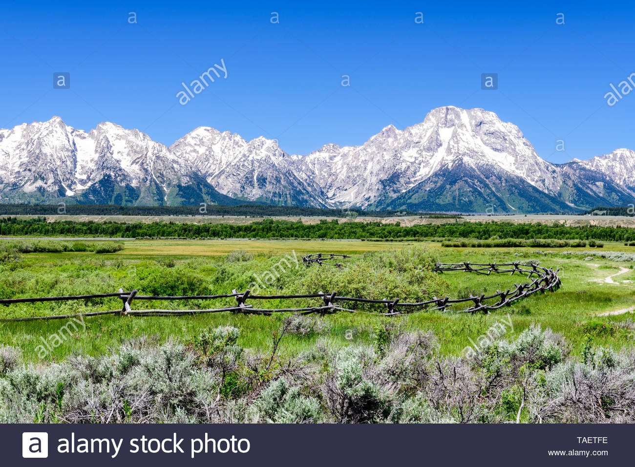 A fence with the Grand Tetons in the background in Grand Teton 1300x956