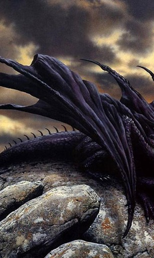 Download Black Dragons Wallpapers for Android by HAnna   Appszoom 307x512