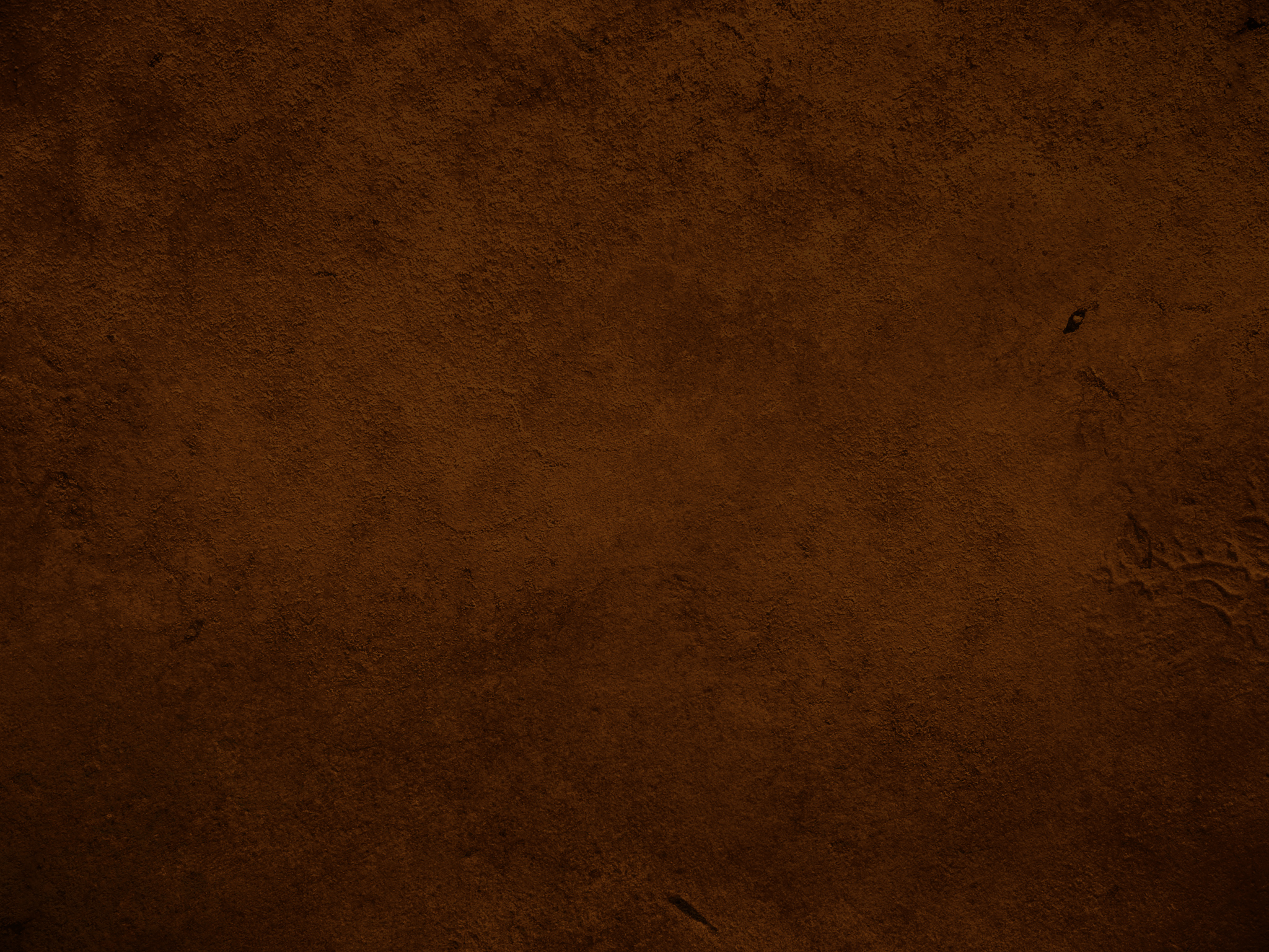 One Color Brown Background   2048x1536 Wallpaper   Ecopetitcat 2048x1536