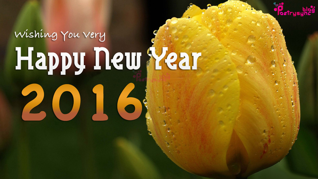 Happy New Year 2016 Desktop Wallpaper Poetry 1080x607
