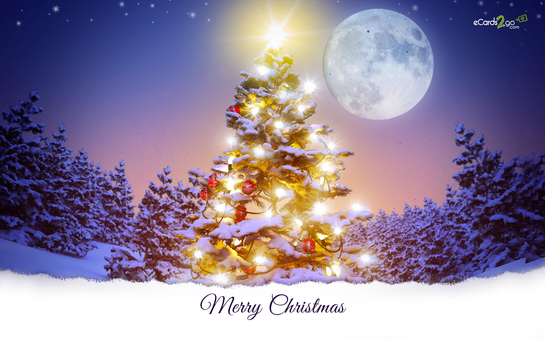 73 Desktop Christmas Wallpapers on WallpaperPlay 2880x1800