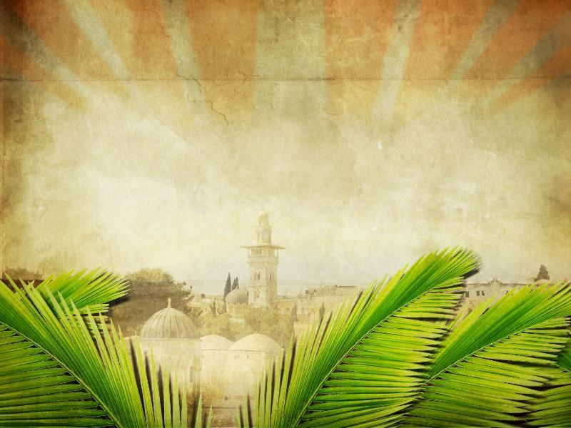 palm sunday wallpaper background