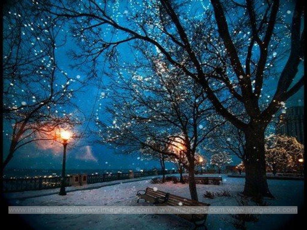 winter night scenes wallpaper wallpapersafari