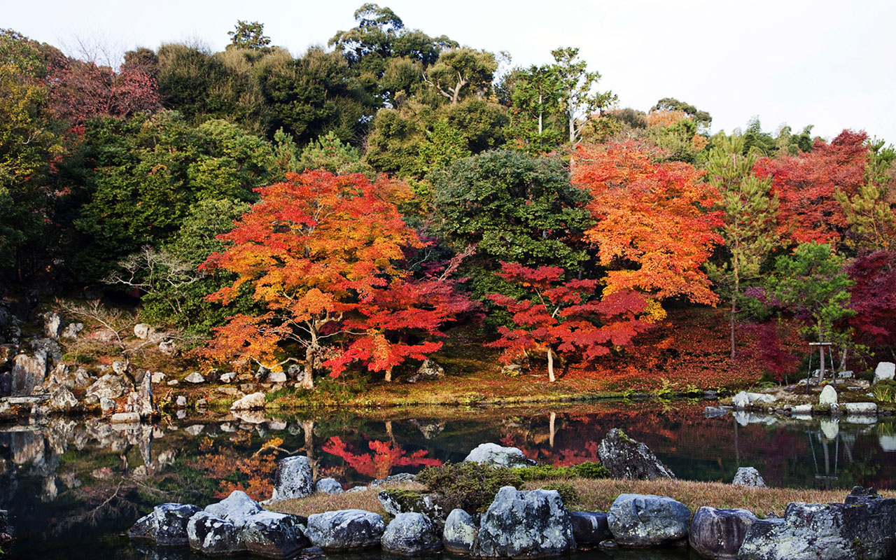 Japanese autumn scenery wallpaper 4 Landscape Wallpapers 1280x800