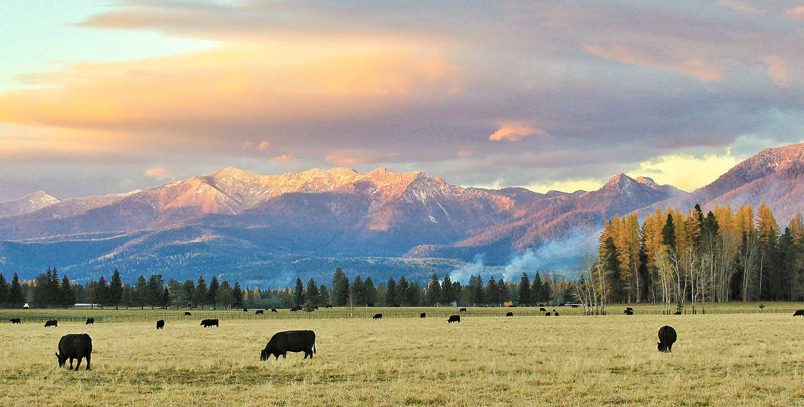 Montana Ranch Wallpaper Wallpapersafari