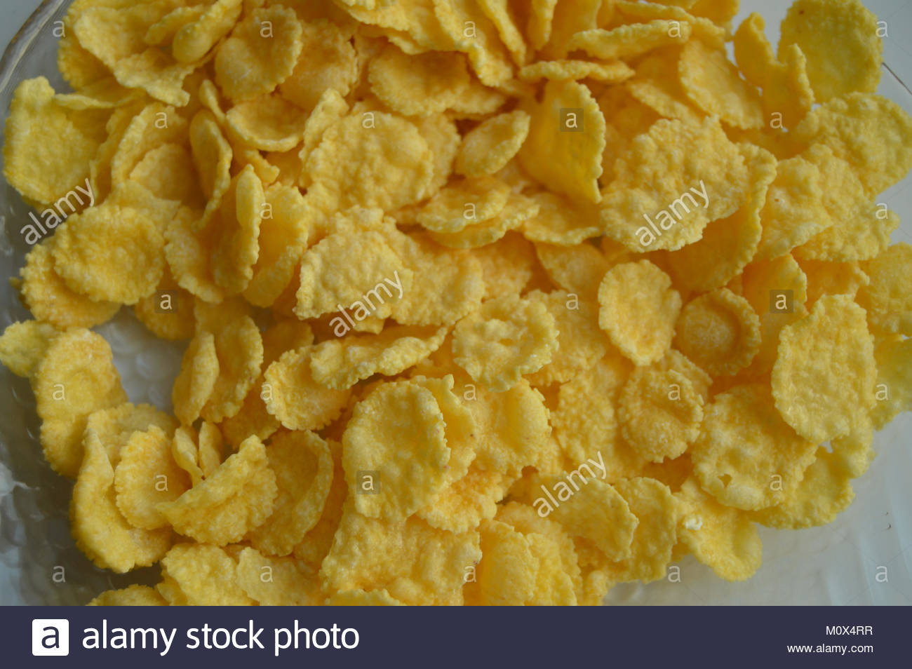 background   crisp corn flakes close up healthy eating Stock 1300x954
