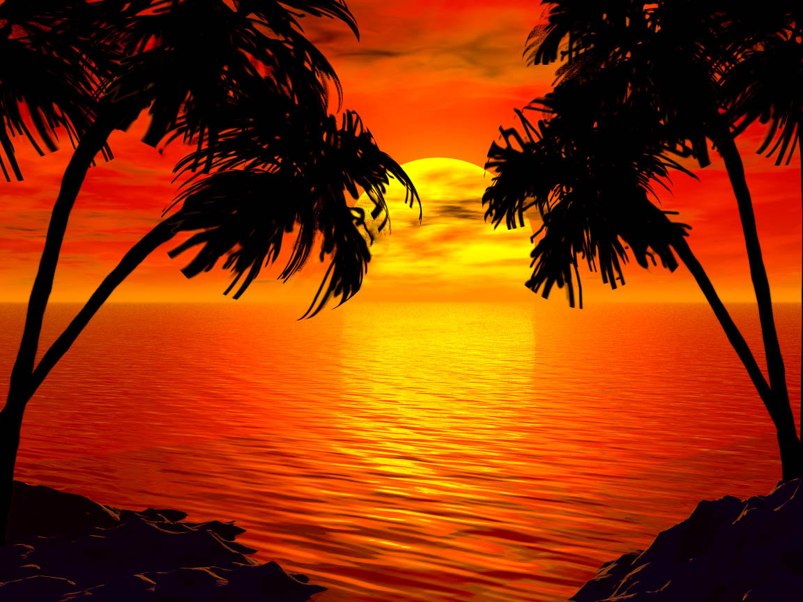 tropical sunset backgrounds - photo #33