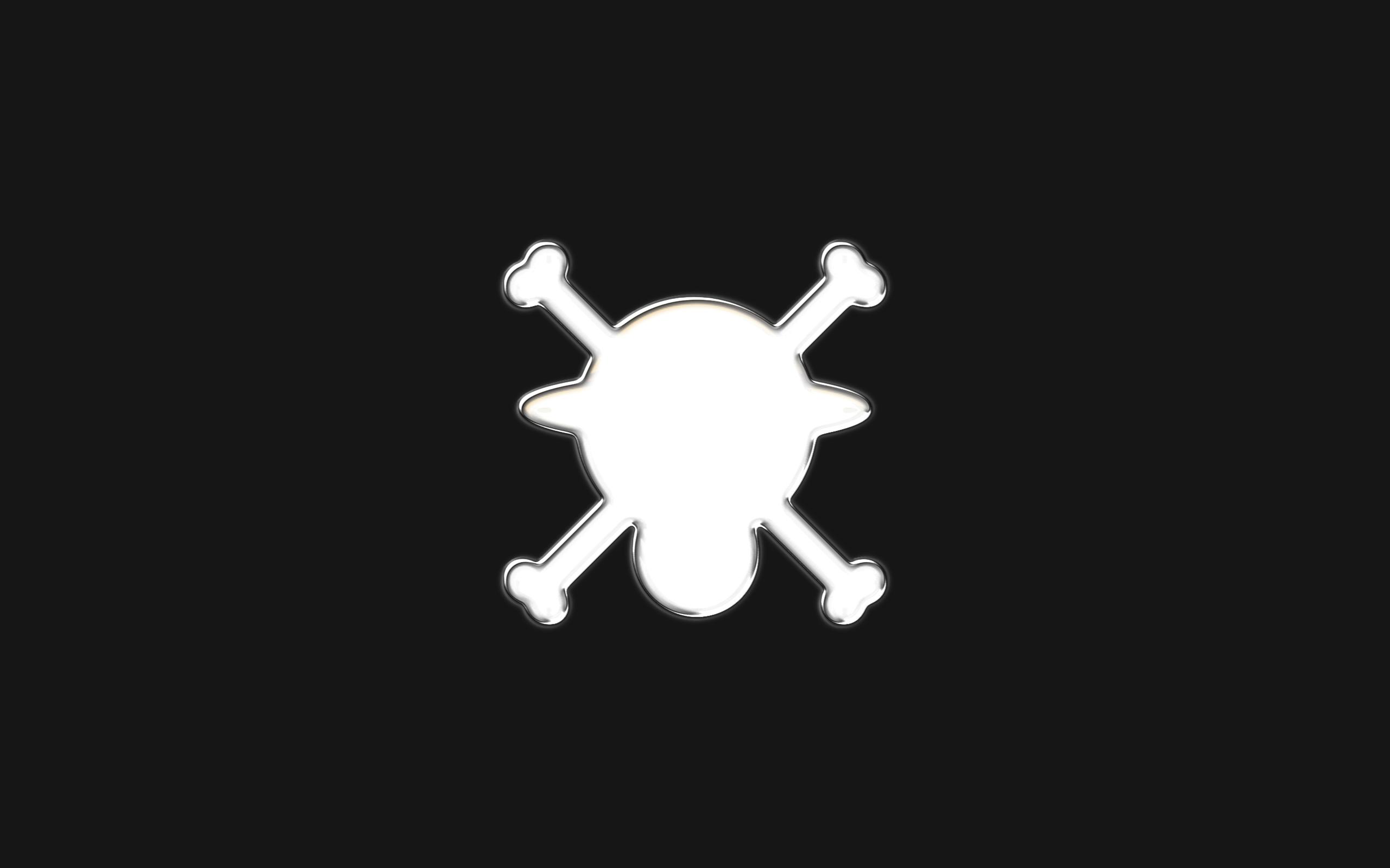 One Piece Logo Wallpaper One Piece Logo White by 2560x1600