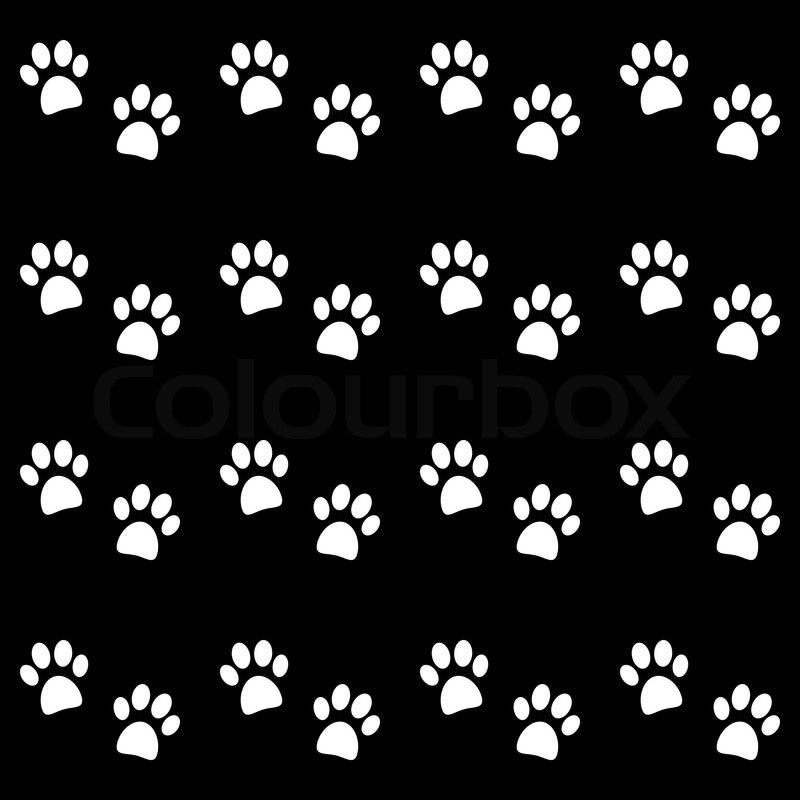 Background With White paw 800x800