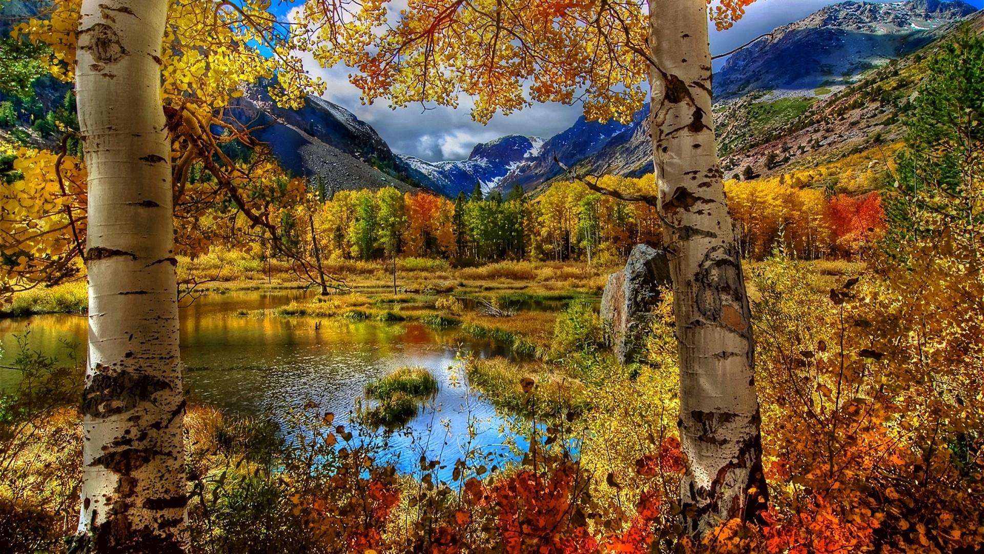 Sfondi pc hd autunno