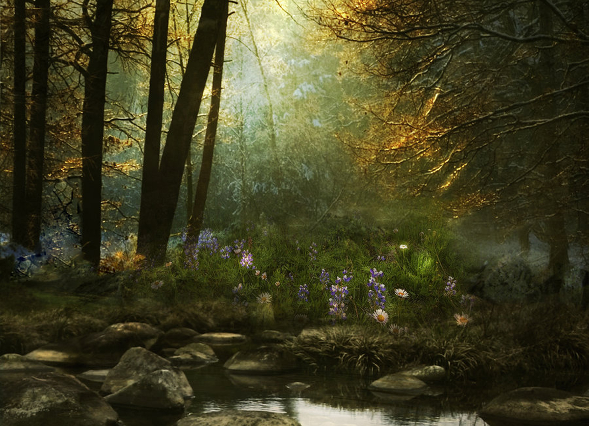 Mystical forest wallpaper wallpapersafari - Mystical background pictures ...