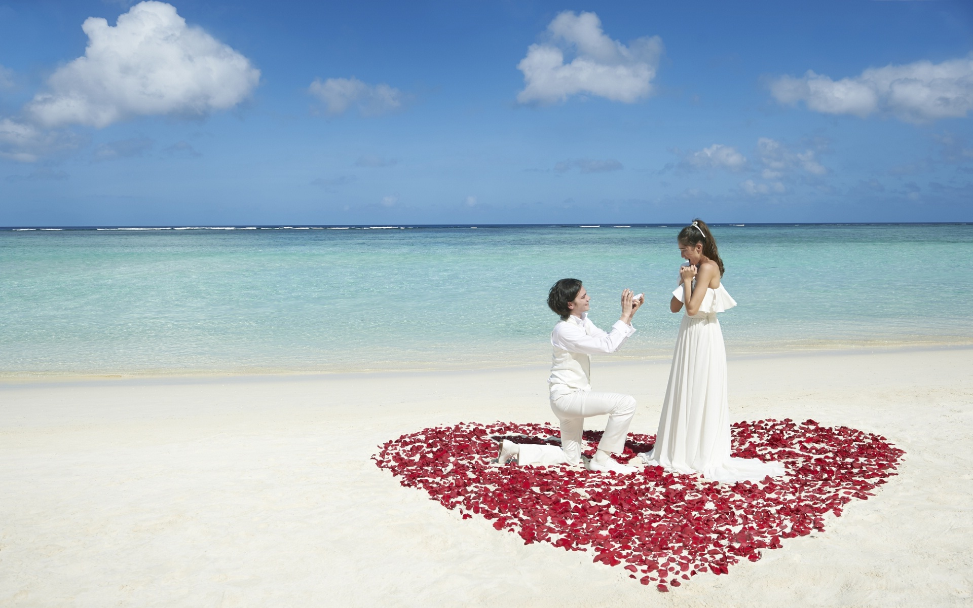 Love proposing couple love wallpapers HD Wallpapers Rocks 1920x1200