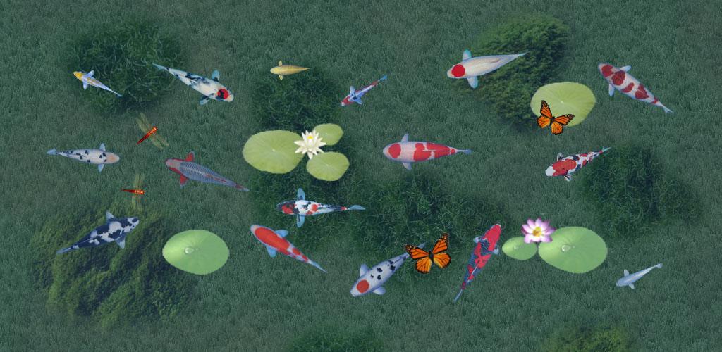 Koi Fishes 1024x500