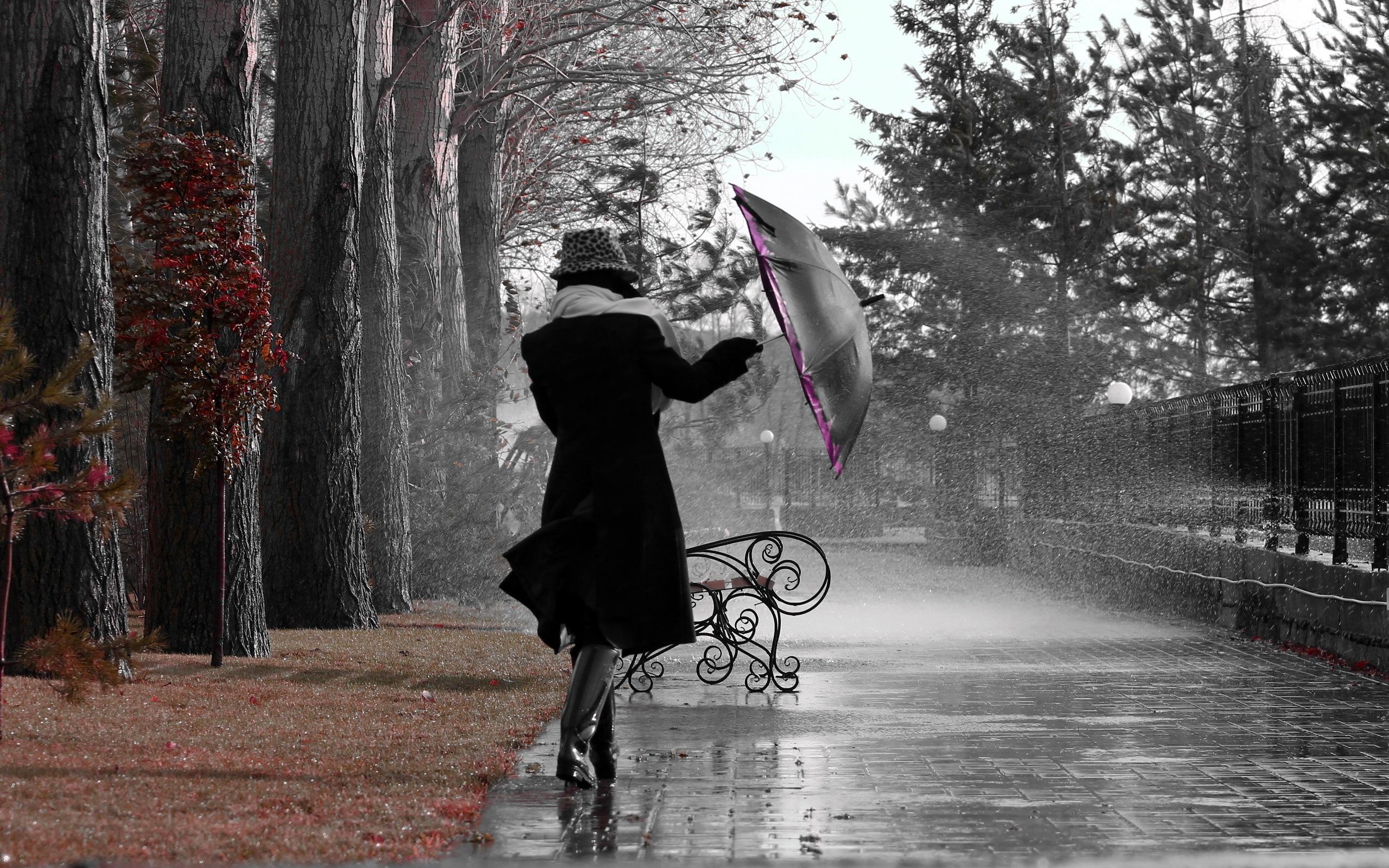 Rainy Day Wallpaper Wallpapersafari