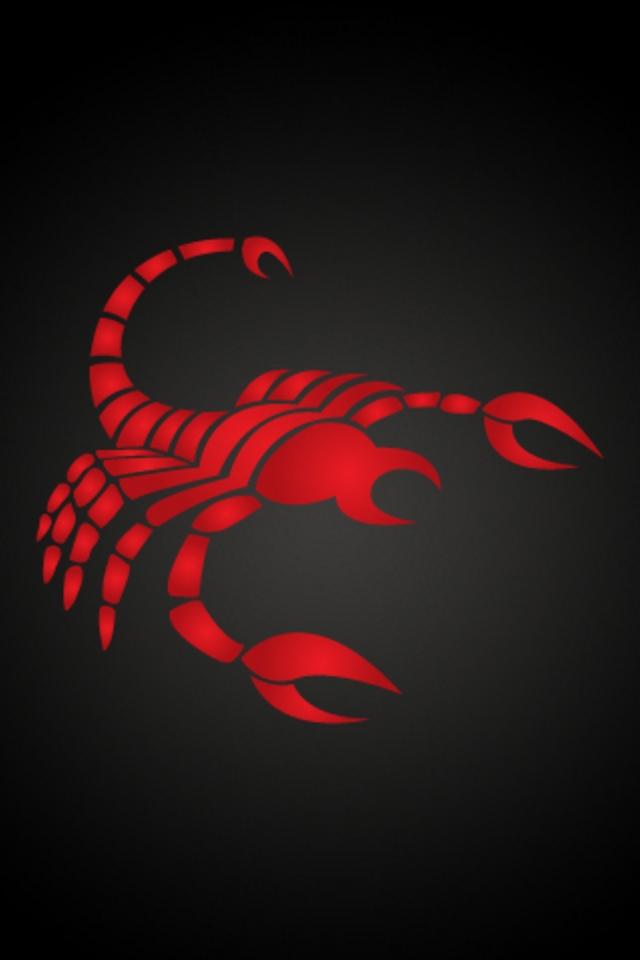 Скорпион Обои На Телефон