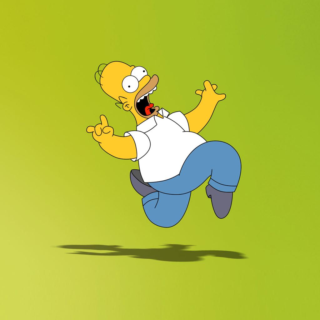 Download Homer Simpson Wallpaper Homer Simpson Pic 1024x1024