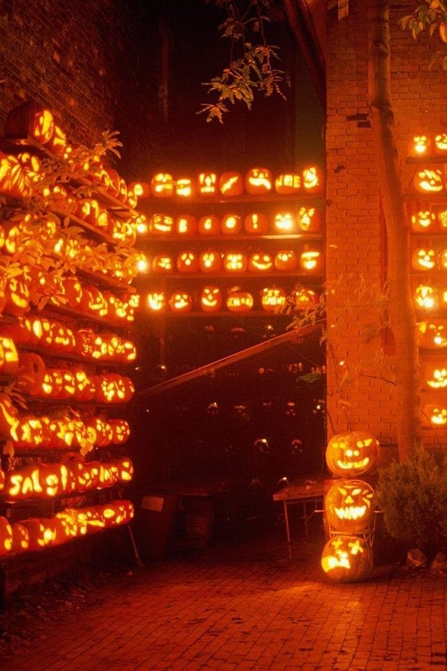 hd cool halloween pumpkins iphone 4 wallpapers backgrounds 640x960