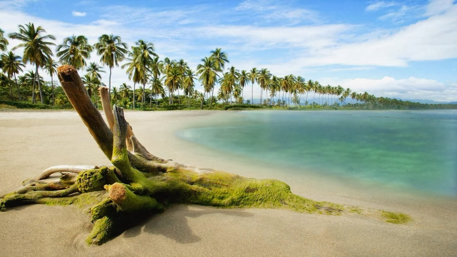 Beach Nature HD Wallpapers 1080p Widescreen   HD 1600x900