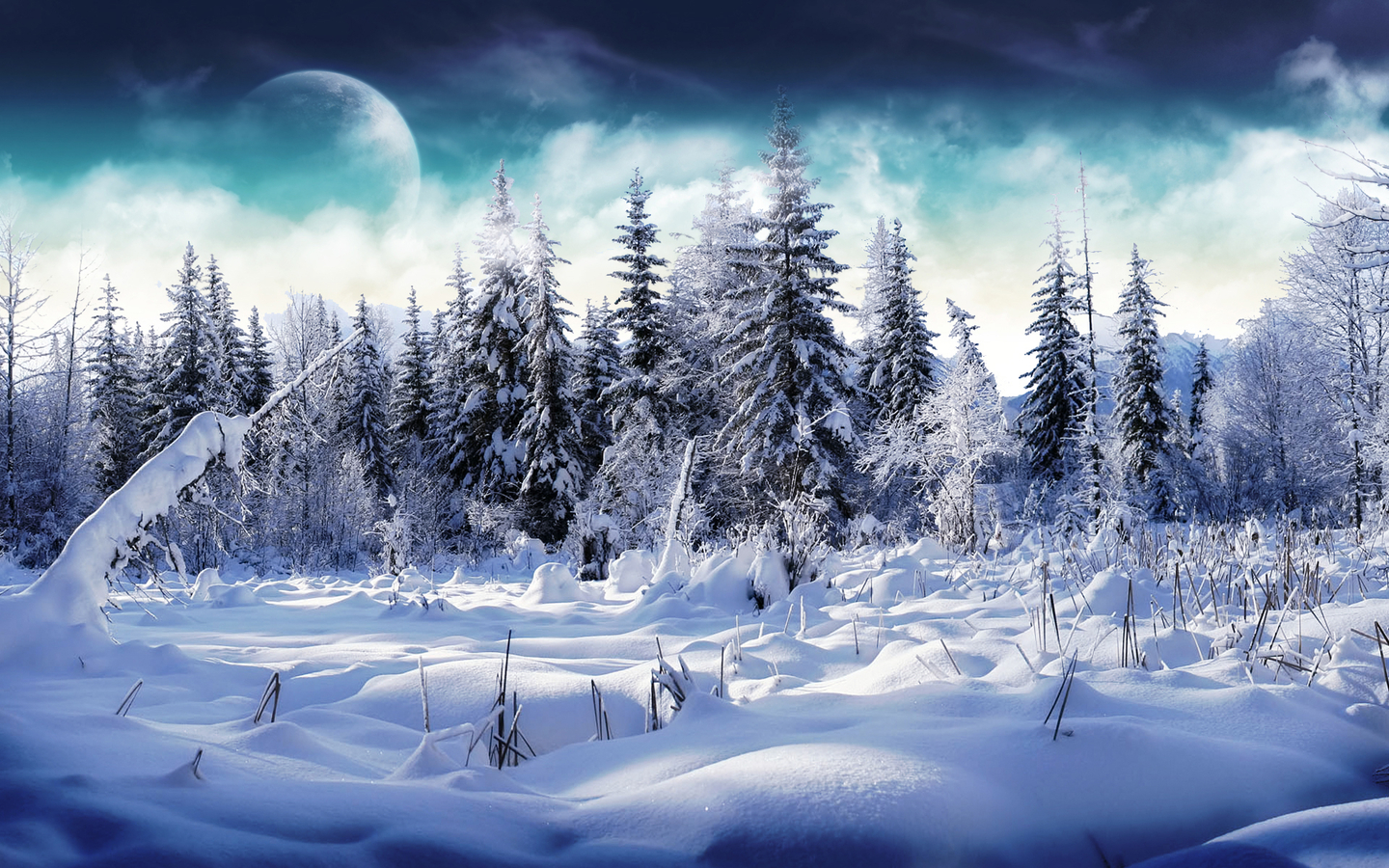 Winter Scenery PowerPoint Background  6 1440x900