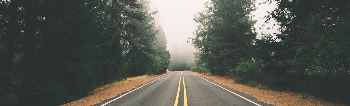 Forested Road TS Online Marketing LinkedIn Background Images 1400x425