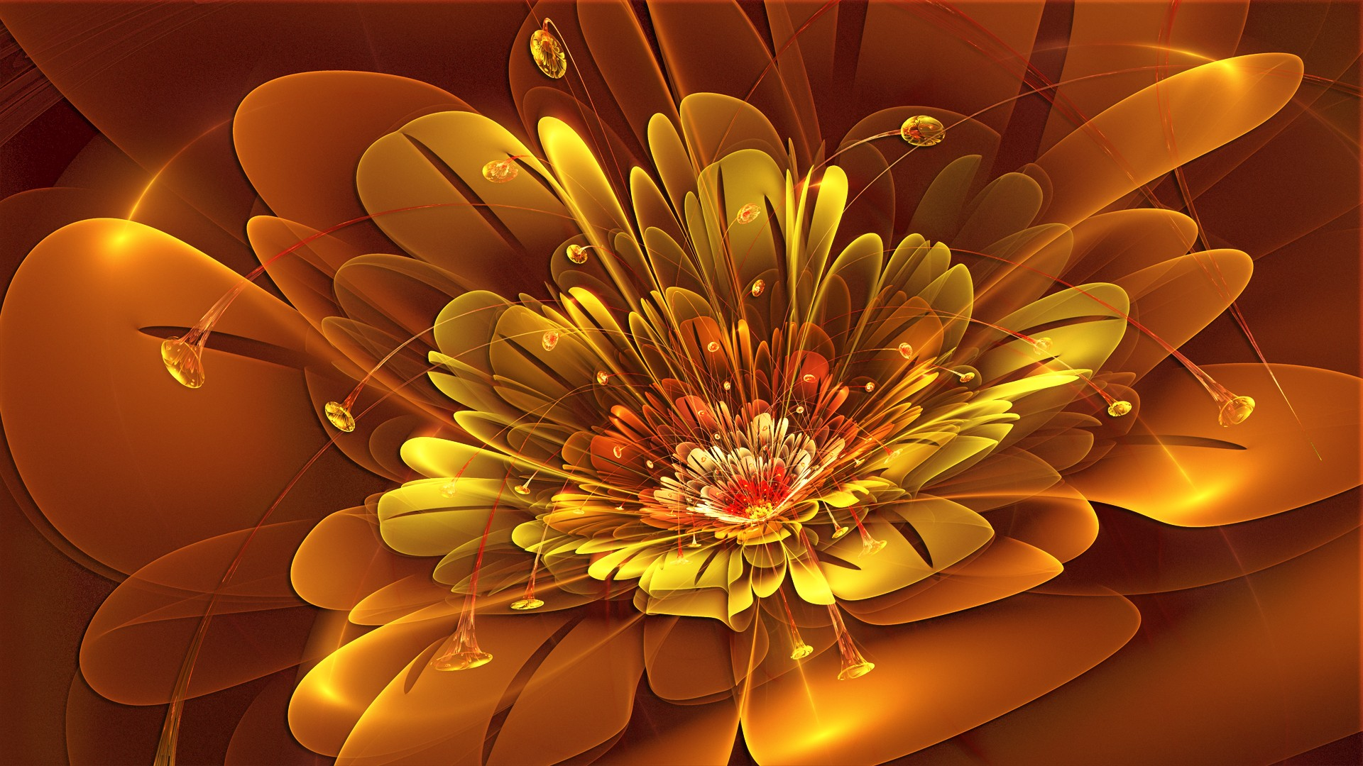 Abstract Flowers Wallpaper 1920x1080 Abstract Flowers Orange 1920x1080