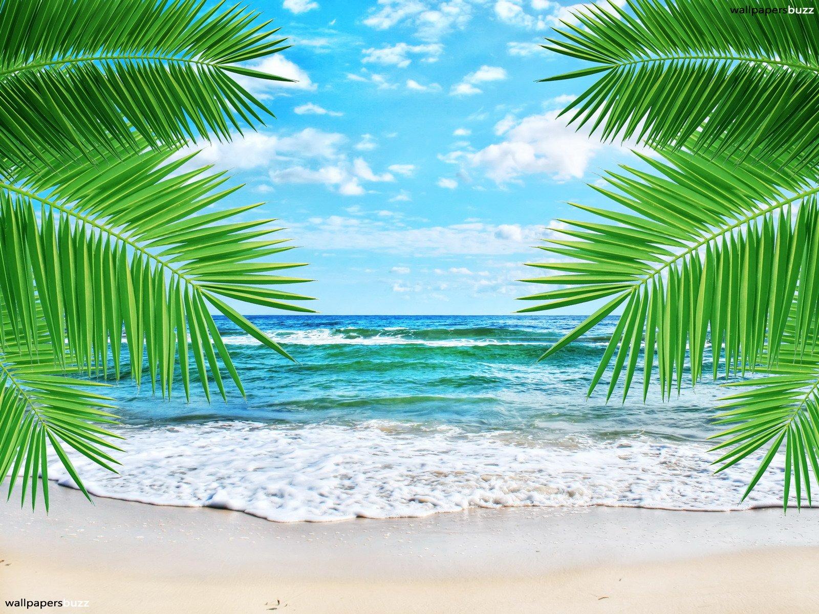 Beach Wallpaper Hd 1600x1200