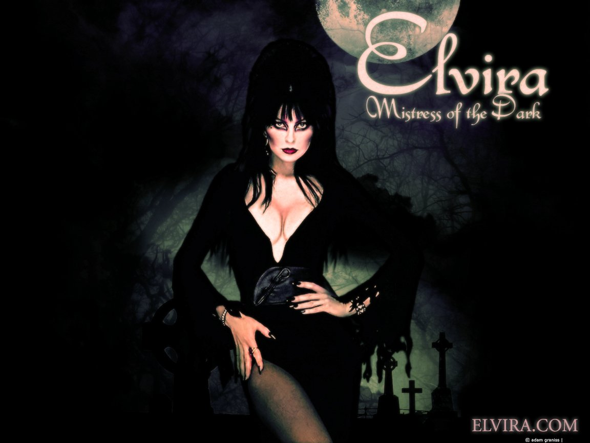 Elvira images Elvira HD wallpaper and background photos 1152x864