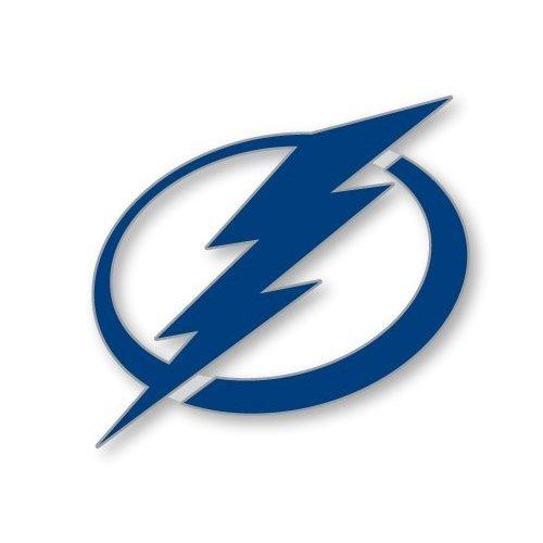 Tampa Bay Lightning Logo 500x500
