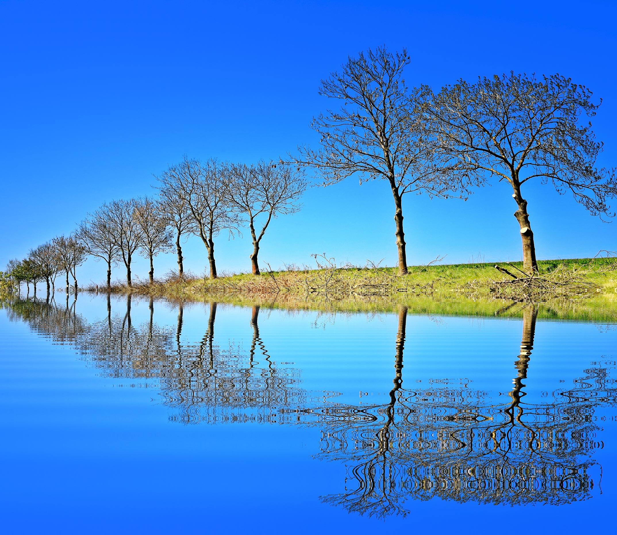 Beautiful Nature Video Download: Beautiful Nature Wallpaper For Desktop