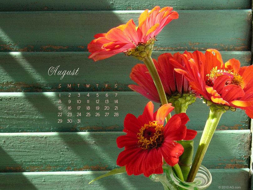 calendario   agosto de 2010 wallpaper 808x606