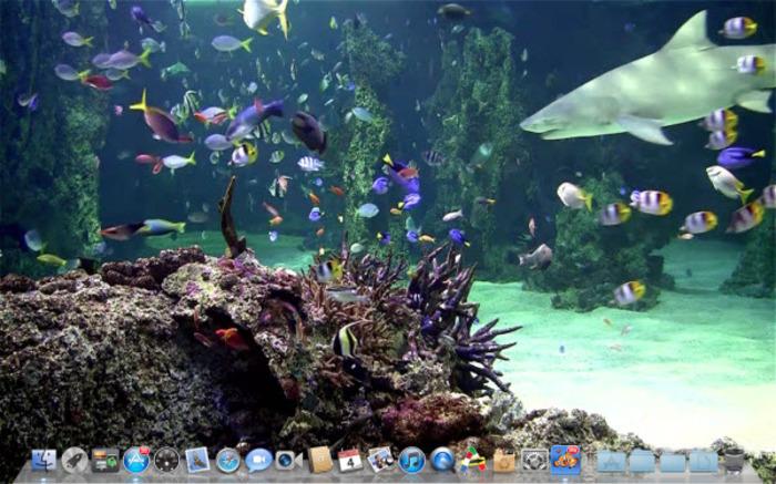Aquarium Live lite Mac   Descargar 700x437