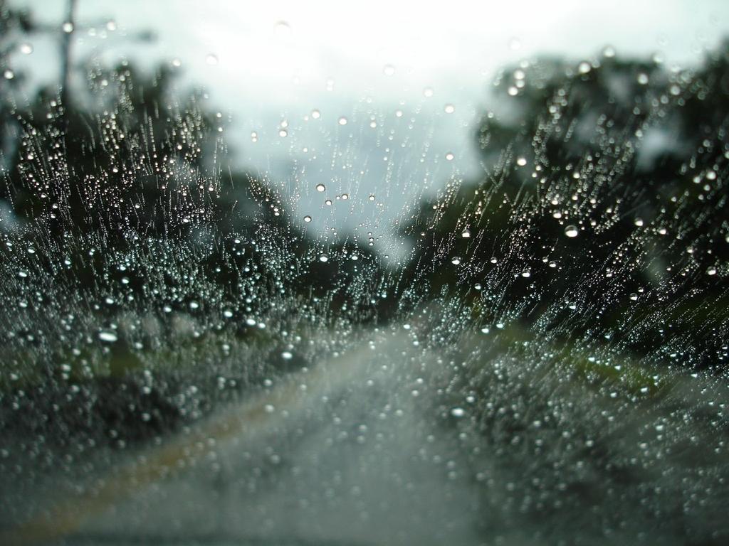 Rainy Day Wallpaper 1024x768