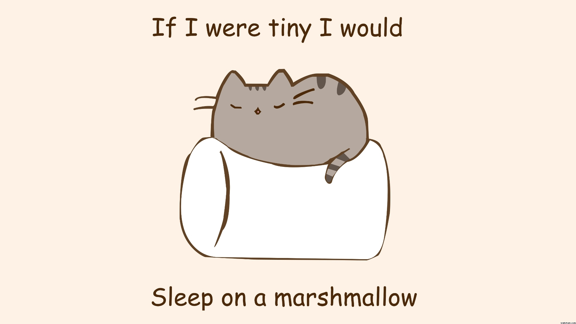 Group of High def Paintings Minimalistic Text Cats Marshmallow Phrase 1920x1080