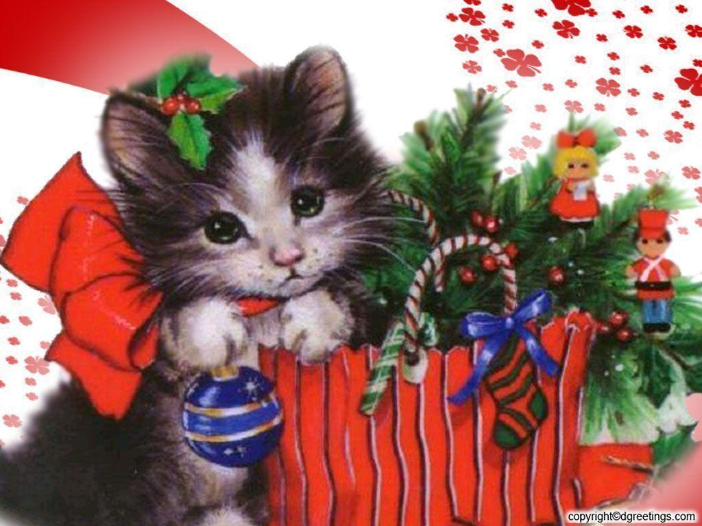 Kitten Wallpapers 1024x768