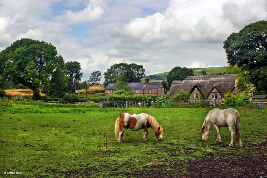 Gallery for english countryside wallpaper 900x600
