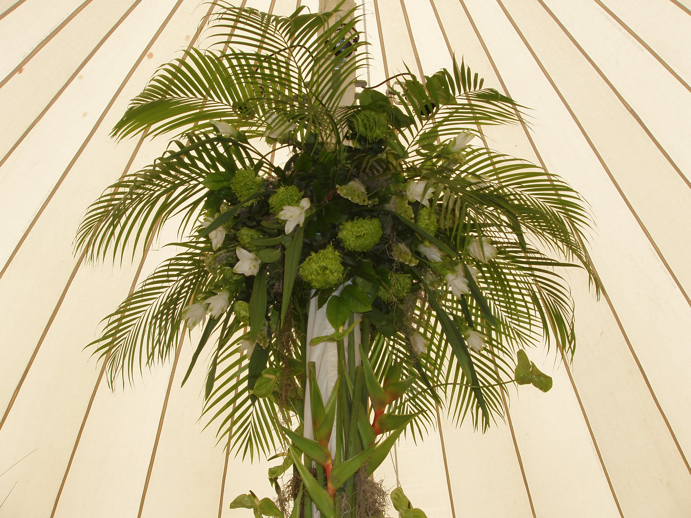 Palm leaves and tropical flowers Lets Party Pinterest 2816x2112