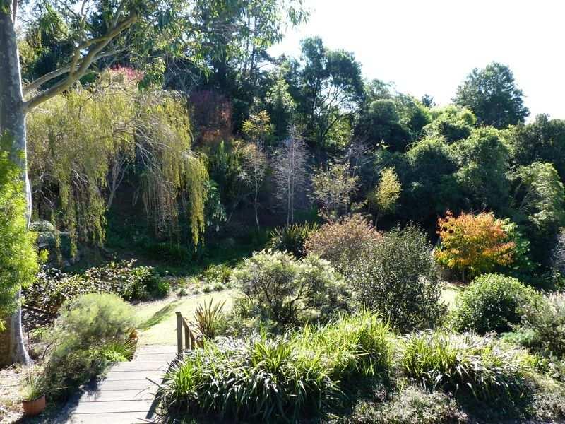 Australian Garden Designs Pictures Fpxqx 800x600