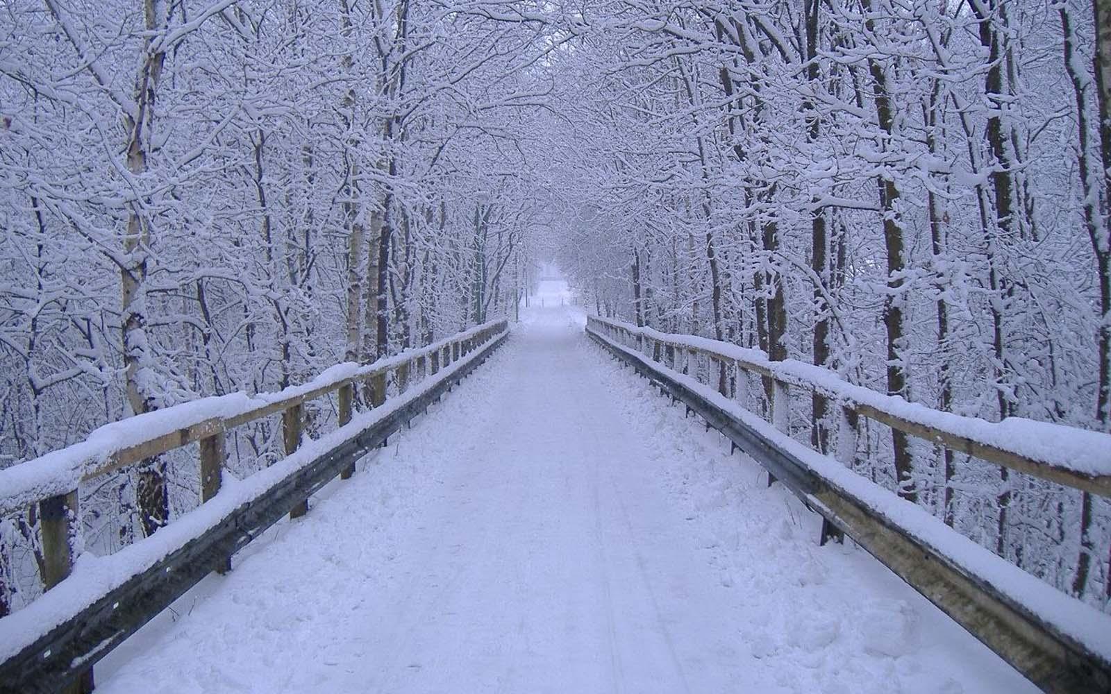 Wallpaper Of Winter Scenes 1600x1000 px 26193 Kb 1600x1000