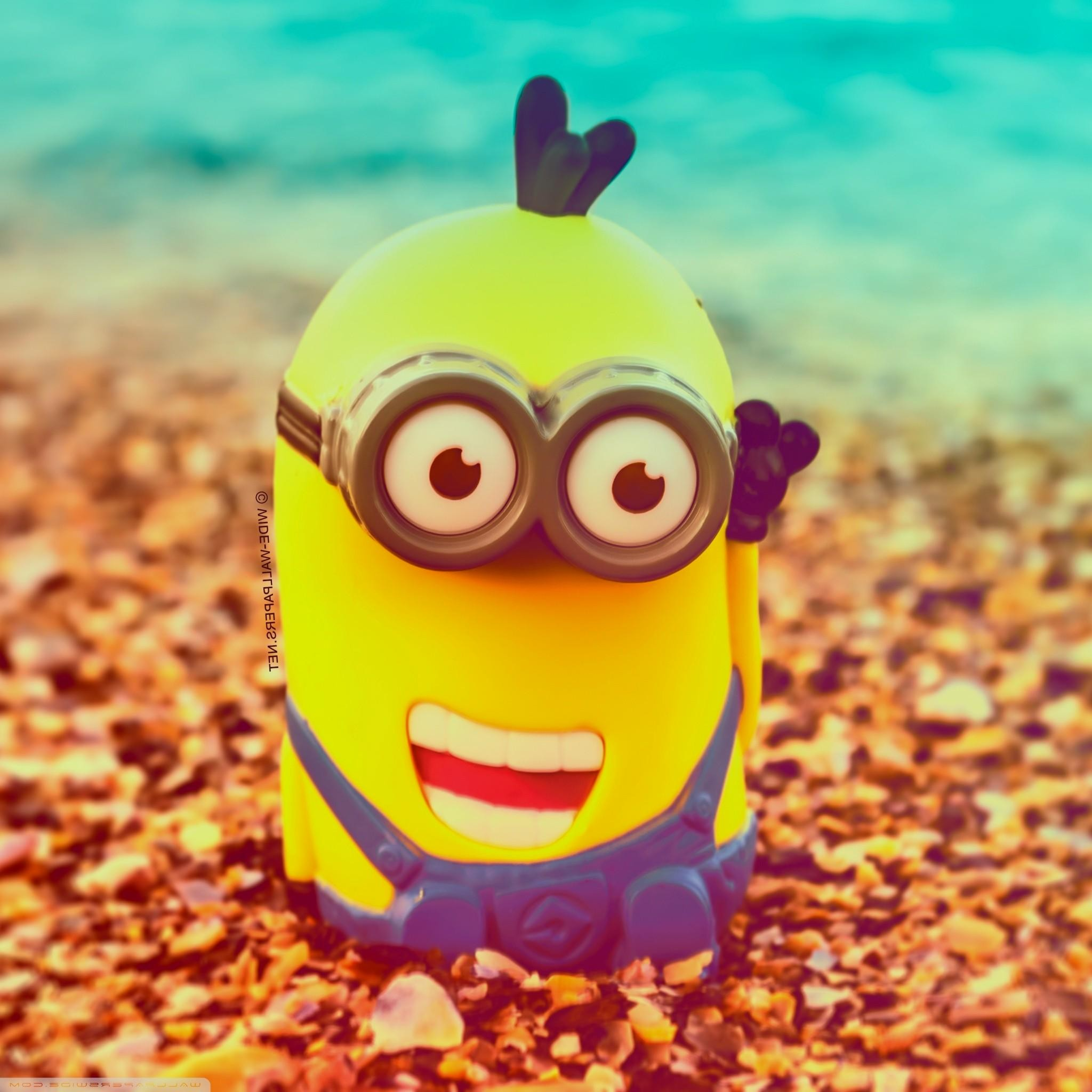 cute minions wallpaper for ipad Wallpaper Sources iPad Wallpaper 2048x2048