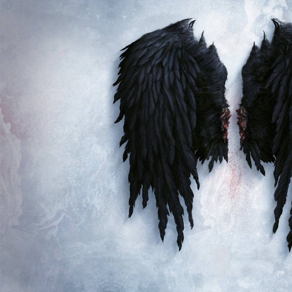 wings angel wings 1920x1200 wallpaper Wallpaper Wallpapers 1024x1024