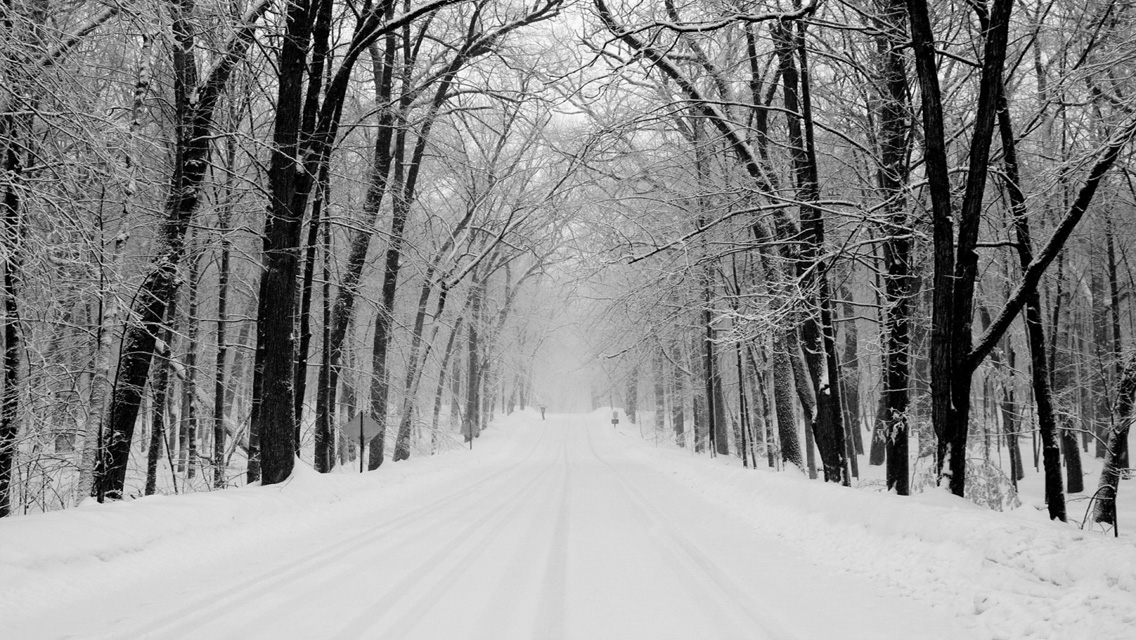 wallpapers   Download Winter Snowy Road HD Wallpapers for iPhone 1136x640