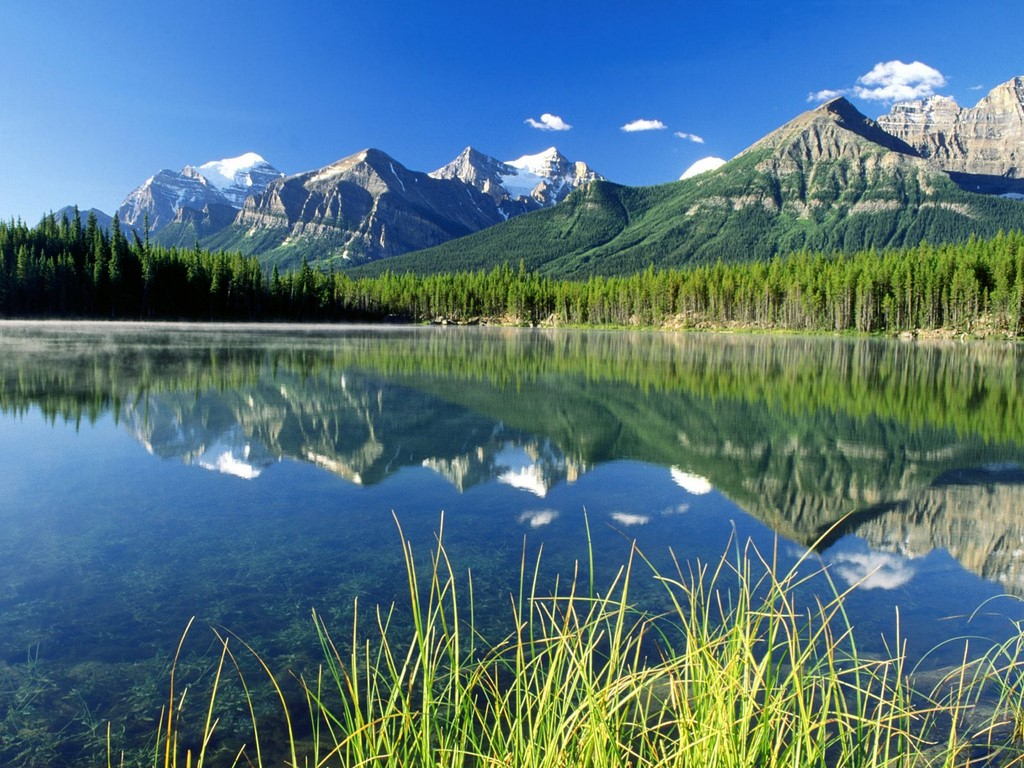 canadian rockies wallpaper awesome canada flag designs hd wallpapers 1024x768