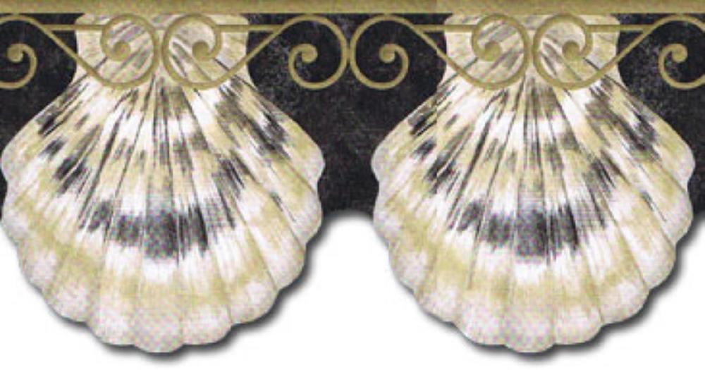 Seashells Sea Shell Scallop Bath Beach Wall Wallpaper Border eBay 1000x525